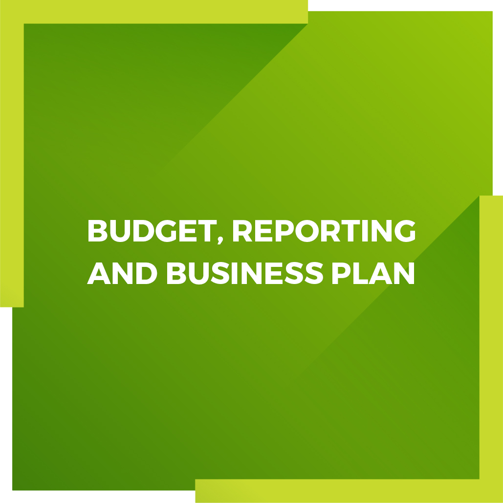 BUDGET-REPORTING-AND-BUSINESS-PLAN