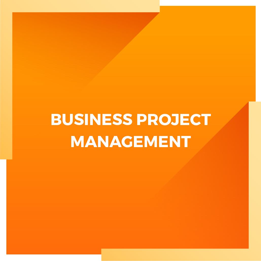 BUSINESS-PROJECT-MANAGEMENT